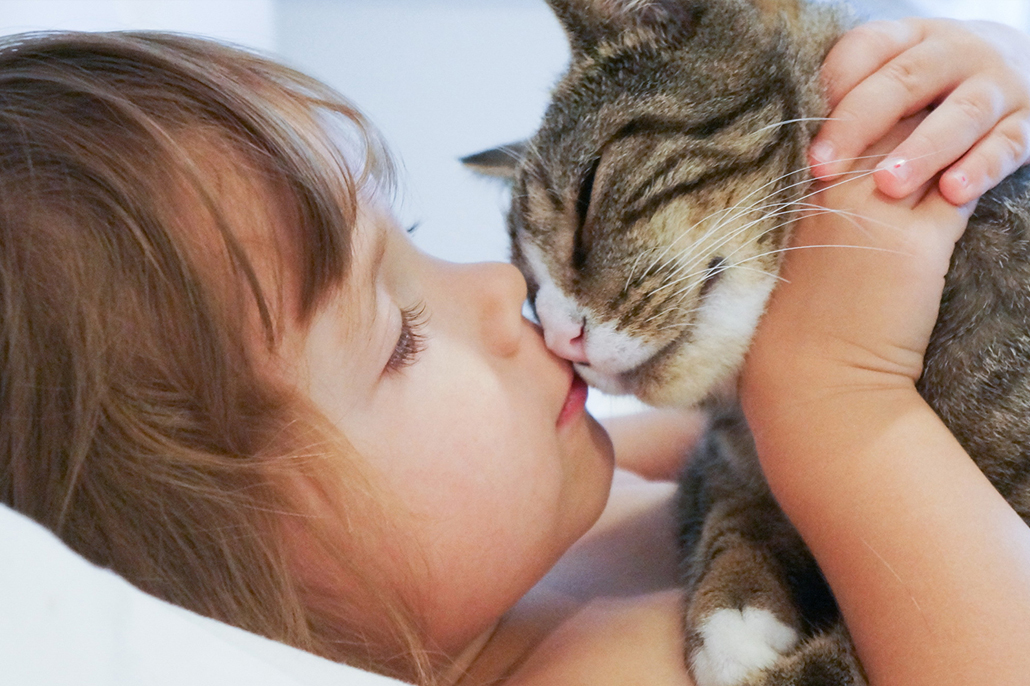 Animal Rescue Foundation | Tulsa, Oklahoma – Finding Great